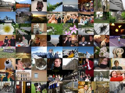 A year photography Collage